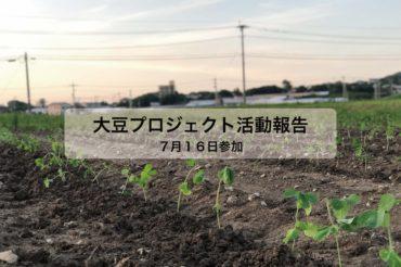 大豆プロジェクト 3回目