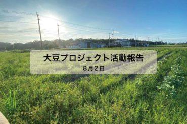 大豆プロジェクト 4回目
