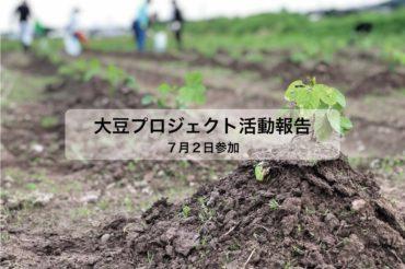 大豆プロジェクト 2回目