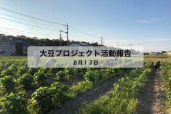 大豆プロジェクト 5回目