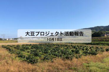大豆プロジェクト 6回目